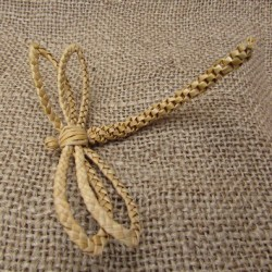 Dragonfly Favour