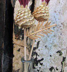 Scottish Straw Thistles